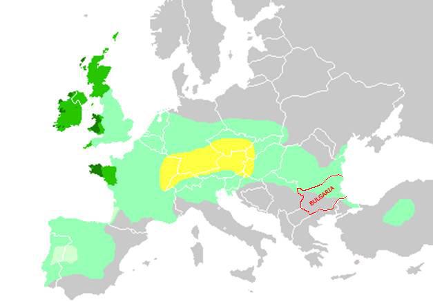 Келтските държави